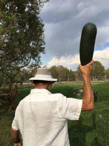 Zucchini Bludgeon
